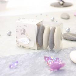 Boite à dragées transparente thème papillons gris