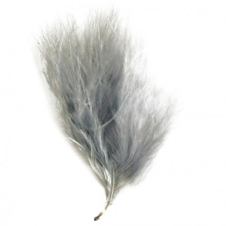Plume Grise