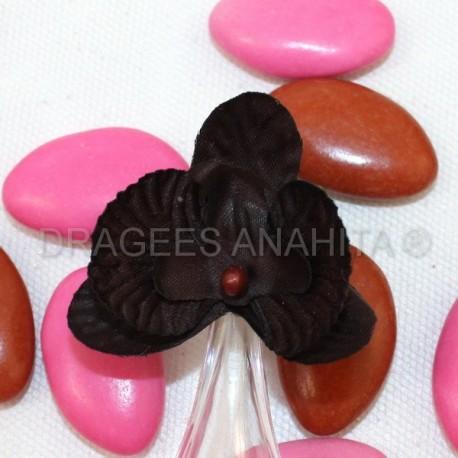 12 Orchidées chocolat pour mariage