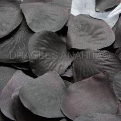 Pétales de rose noir et blanche
