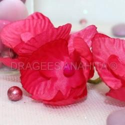 12 Orchidées fuchsia pour mariage